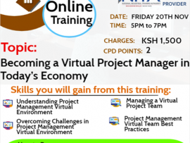 Becoming a Virtual Project Manager in Today's Economy